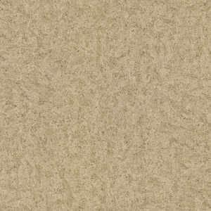 6226 Ivory Kashmire